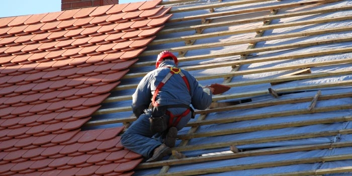 Specialist Roofing Services